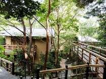 *部屋・温泉・食事処などをつなぐ森の小道。