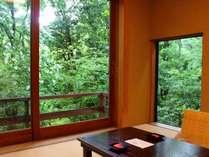 小和室「宣長」窓の外にはニッポンの森が広がる。