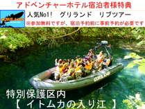 特別保護区【イトムカの入り江】水中には巨大魚、陸上にはカモシカや熊が観察できるかも!?