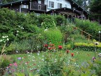 花がさきほこる7月のフロントガーデン
