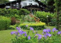 宿根草や山野草を中心としたガーデン