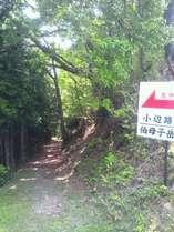 熊野参詣道「小辺路」が近くを通る。高野山からの一泊目に最適です。