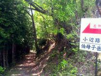 世界遺産熊野古道 小辺路