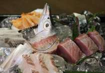 1階『せんしゅう地魚や』は泉州の漁港に揚がった活魚だけを仕入れ、お好みに応じて調理致します。