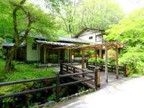 軽井沢の国有林に佇む閑静な一軒宿「小瀬温泉ホテル」