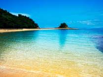 ★伊王島海水浴場コスタ・デル・ソル:透き通った美しい海では、小さなお魚も見られます。