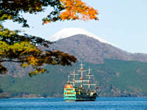 海賊船が芦ノ湖を行き交う様子も間近でご覧いただけます。