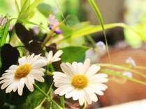 館内にも様々な花々を飾り、クラシカルな洋館が華やかな雰囲気に