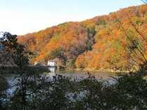 ☆鳥取の秋旅応援プラン!「本格中国庭園」をチャイナ・ドレス姿でなりきり散策、夕食は選べる会席料理
