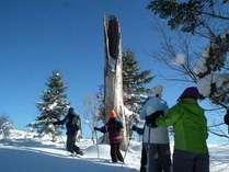 「北海道旅行券」「どさんこ旅行券」可 スノーシューハイキング(1DAYランチ付)&ディナープラン