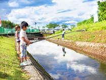 *【釣り堀】初めての方も大歓迎!ニジマス、山女、岩魚が獲れ、釣った魚は持ち帰る事ができます。