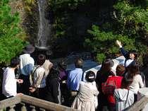 【唯一無二の絶景】某人気番組にも取り上げられた「錦ヶ浦」の魅力に迫る!ガイドツアーご予約確定プラン
