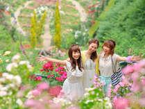 【意外と熱海】熱海ローズフェスティバル ガーデン無料ご招待♪