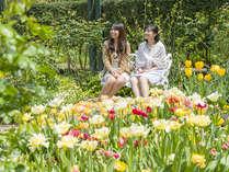 【アカオハーブ&ローズガーデン】春はチューリップや早咲きバラが園内を彩ります