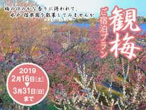 *2019観梅プラン
