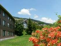 自然と一つになれる雲上の温泉リゾート リゾリックス車山高原
