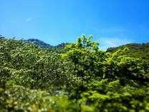 【名峰御在所岳に登ろう 】 山ガール&山ボーイプラン