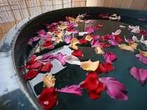 季節により使用する花は異なるが、露天風呂付客室限定のフラワーバス