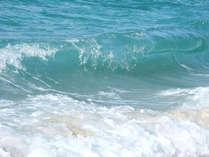 【海水浴】夏はやっぱり海!小学生割引&お子様喜ぶ特典付き★