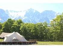 残雪の白馬三山と新緑が美しい白馬村民が最も愛する芽吹きの春