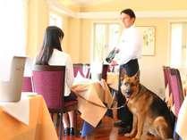 ■レストランでわんちゃんとご一緒にお食事もできます