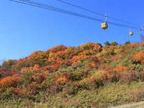 磐梯山ロープウェイと紅葉