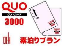 QUOカード3,000円分 素泊まりプラン