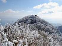 【周辺】幻想的な霧氷。地元では「花ぼうろ」とも呼ばれています。例年1月~2月頃ご覧いただけます。