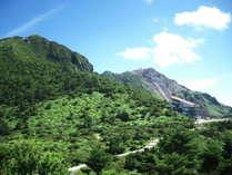 夏の緑を存分に楽しめる仁田峠。