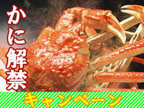 ★蟹解禁キャンペーン★近海産ずわい蟹まるごと1杯にお造りと牛すき焼がついてビックリ14800円!