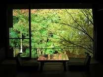 お部屋からライトアップされた庭園を臨む(毎晩開催19:30~22:00)