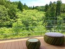 テラス付き客室から新緑を望み、澄みきった空気を身体に満たす。(イメージ)