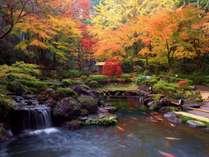宙SORA自慢の15000坪の大庭園(秋シーズン)
