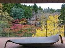 テラス付き客室のデッキより、四季の移ろいを眺めながら思いをはせる(秋の紅葉イメージ)