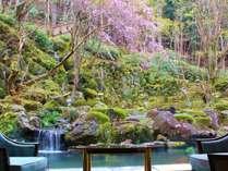 宙SORAの人気しだれ桜が春の訪れを知らせてくれます。4月上旬が見頃。(イメージ)