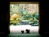 「思いをはせる宿」旅という非日常へと誘う。(冬の光が溢れる15000坪の大庭園が広がる)