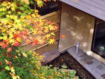 秋には、露天風呂から紅葉をお楽しみ頂けます
