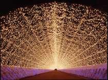 なばなの里:まるで永遠に続くかのように、どこまでも続く光のトンネル。