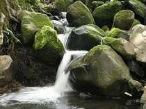 清流が流れる山峡ランド