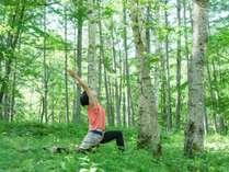 【9/29限定】グランピングの森で、ヨガをしよう♪