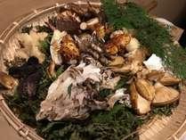 【季節限定・きのこ鍋会席】 冬はお鍋でほっかほか♪信州きのこ堪能プラン♪【夕部屋食】