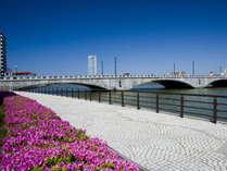 5月にはツツジも色鮮やかに咲いて、やすらぎ堤を通る人を楽しませてくれます♪