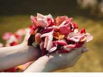 素敵空間♪薔薇の花びら浮かぶ貸切風呂【豪華とれピチ会席】≪朝食なしdeその分お安い≫じゃらん限定