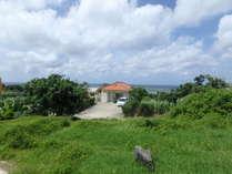南隣地からの建物と景観観