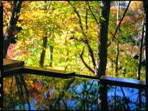 紅葉の時期は色づいた葉が手元に届くほど自然の中にある貸切露天風呂