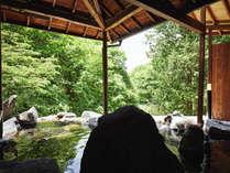 【天与の湯】渓谷を一望できる女性専用露天風呂