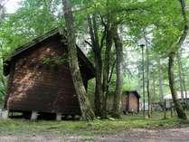 ロフトタイプのペット用ログハウス(5名まで宿泊可能)