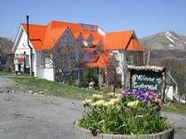 目印はオレンジの屋根!