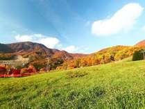 【紅葉の蔵王】ホテルの目の前は高原フィールド。蔵王高原の美しい紅葉を一望出来る