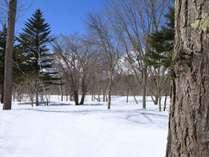 是非、当宿を起点に最高の冬をお過ごしください。